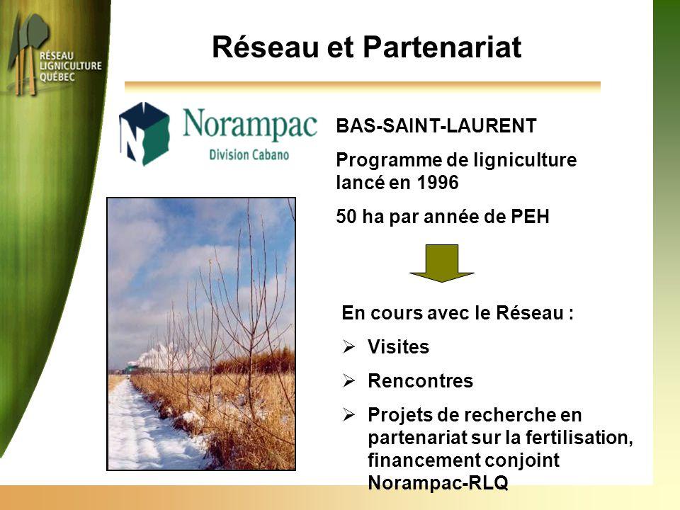 Réseau et Partenariat BAS-SAINT-LAURENT Programme de ligniculture lancé en 1996 50 ha par année de PEH En cours avec le Réseau :  Visites  Rencontres  Projets de recherche en partenariat sur la fertilisation, financement conjoint Norampac-RLQ