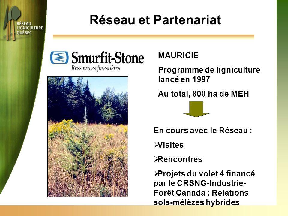 Réseau et Partenariat MAURICIE Programme de ligniculture lancé en 1997 Au total, 800 ha de MEH En cours avec le Réseau :  Visites  Rencontres  Projets du volet 4 financé par le CRSNG-Industrie- Forêt Canada : Relations sols-mélèzes hybrides