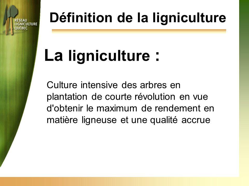 La ligniculture : Culture intensive des arbres en plantation de courte révolution en vue d obtenir le maximum de rendement en matière ligneuse et une qualité accrue Définition de la ligniculture