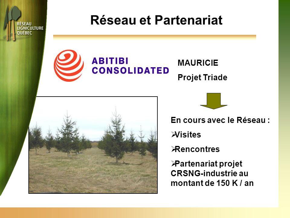 Réseau et Partenariat MAURICIE Projet Triade En cours avec le Réseau :  Visites  Rencontres  Partenariat projet CRSNG-industrie au montant de 150 K