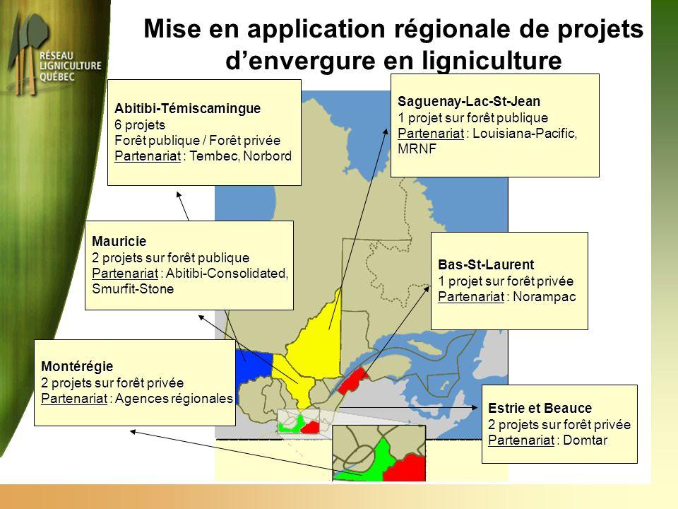 Abitibi-Témiscamingue 6 projets Forêt publique / Forêt privée Partenariat : Tembec, Norbord Mise en application régionale de projets d'envergure en li