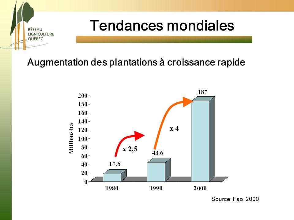Tendances mondiales Augmentation des plantations à croissance rapide Source: Fao, 2000 x 2,5 x 4