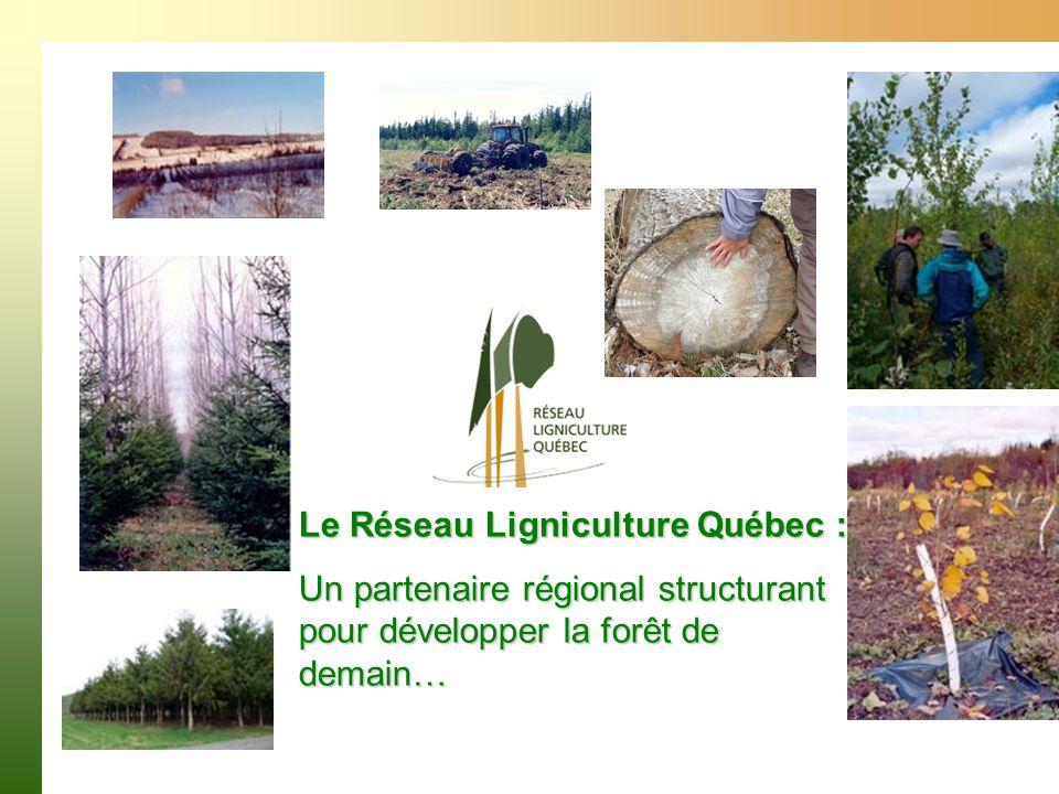 Le Réseau Ligniculture Québec : Un partenaire régional structurant pour développer la forêt de demain…