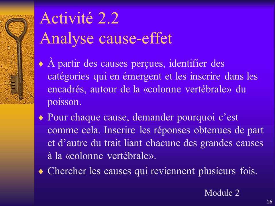16 Activité 2.2 Analyse cause-effet  À partir des causes perçues, identifier des catégories qui en émergent et les inscrire dans les encadrés, autour