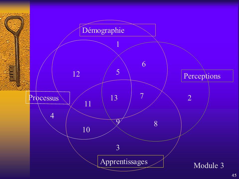 45 Démographie Perceptions Apprentissages Processus Module 3 1 2 3 4 5 6 7 8 9 10 11 12 13