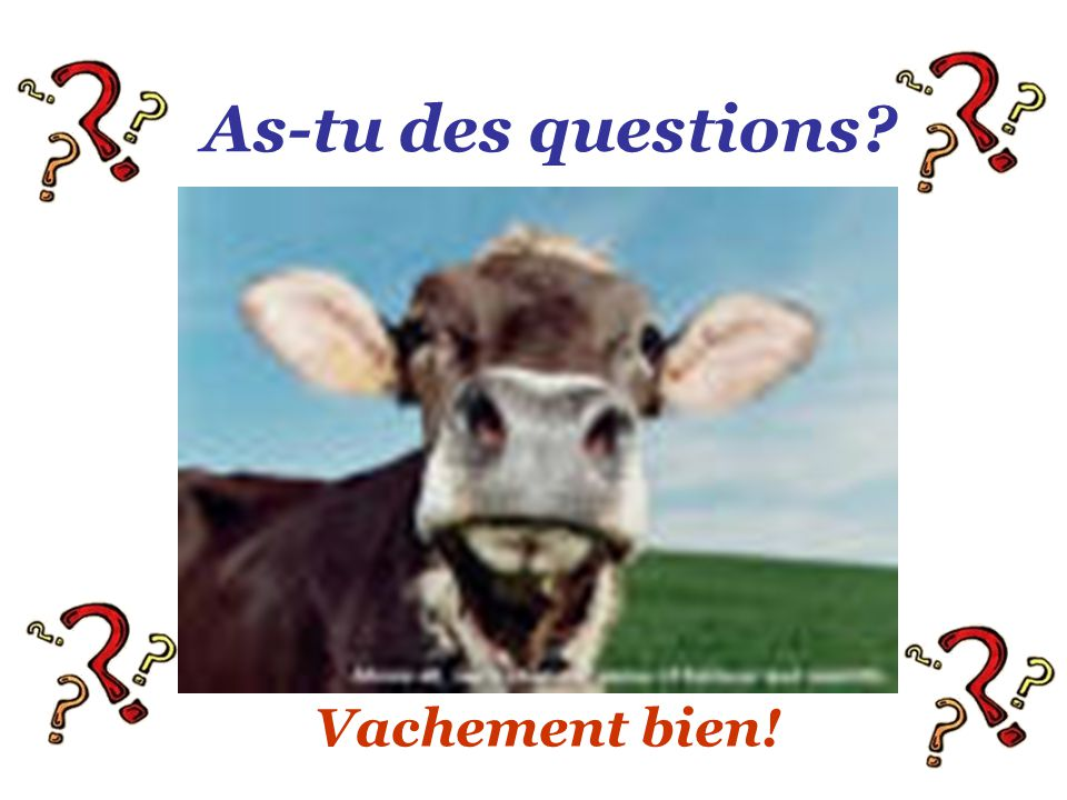 As-tu des questions? Vachement bien!