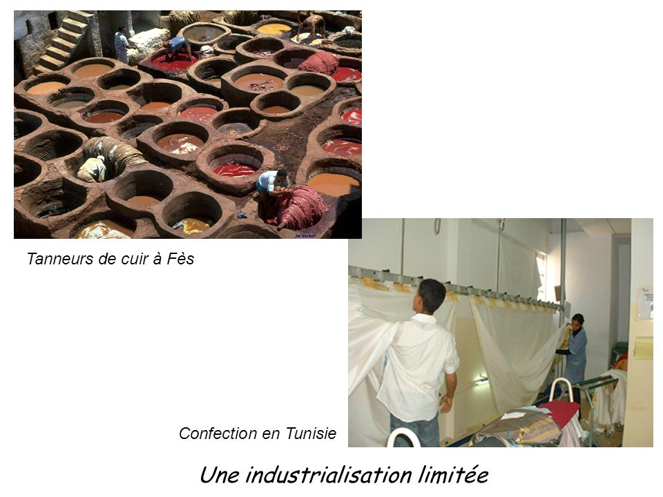 Une industrialisation limitée Tanneurs de cuir à Fès Confection en Tunisie