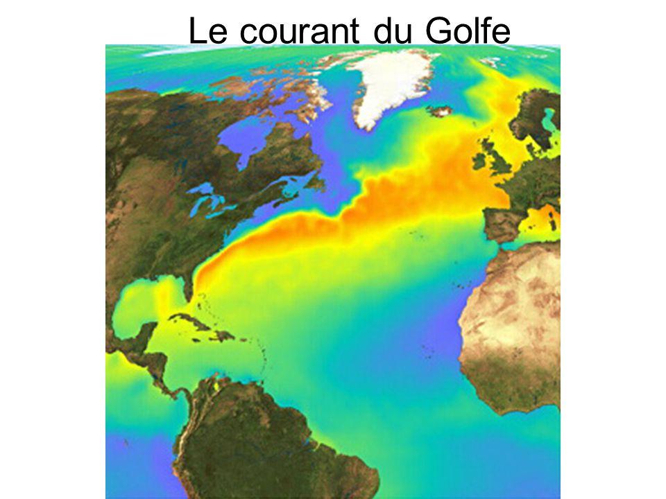 Le courant du Golfe
