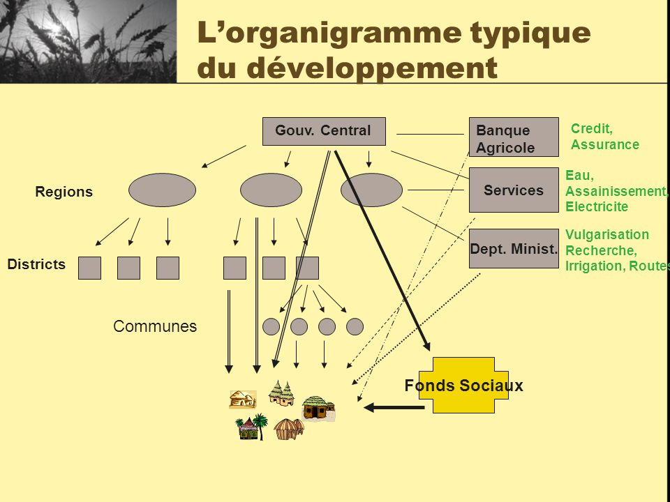 L'organigramme typique du développement Dept. Minist.
