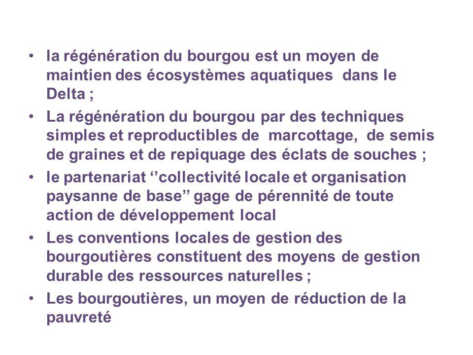 la régénération du bourgou est un moyen de maintien des écosystèmes aquatiques dans le Delta ; La régénération du bourgou par des techniques simples et reproductibles de marcottage, de semis de graines et de repiquage des éclats de souches ; le partenariat ''collectivité locale et organisation paysanne de base'' gage de pérennité de toute action de développement local Les conventions locales de gestion des bourgoutières constituent des moyens de gestion durable des ressources naturelles ; Les bourgoutières, un moyen de réduction de la pauvreté