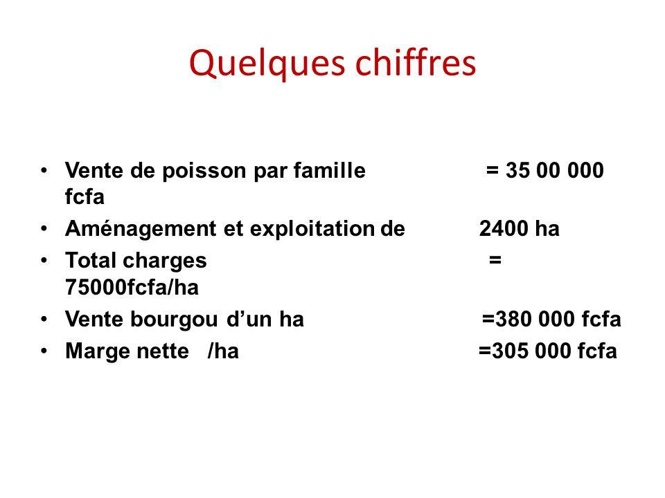 Quelques chiffres Vente de poisson par famille = 35 00 000 fcfa Aménagement et exploitation de 2400 ha Total charges = 75000fcfa/ha Vente bourgou d'un ha =380 000 fcfa Marge nette /ha =305 000 fcfa