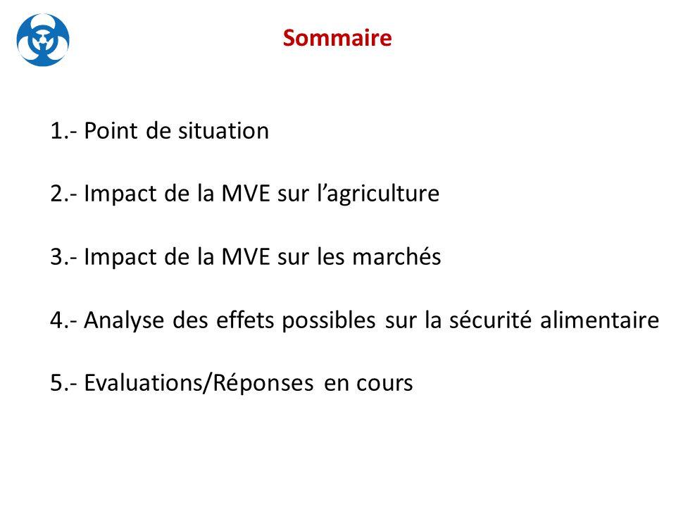 1.- Point de situation 2.- Impact de la MVE sur l'agriculture 3.- Impact de la MVE sur les marchés 4.- Analyse des effets possibles sur la sécurité alimentaire 5.- Evaluations/Réponses en cours Sommaire