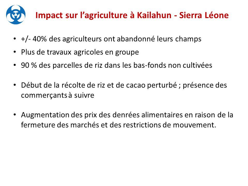 Impact sur l'agriculture à Kailahun - Sierra Léone +/- 40% des agriculteurs ont abandonné leurs champs Plus de travaux agricoles en groupe 90 % des parcelles de riz dans les bas-fonds non cultivées Début de la récolte de riz et de cacao perturbé ; présence des commerçants à suivre Augmentation des prix des denrées alimentaires en raison de la fermeture des marchés et des restrictions de mouvement.