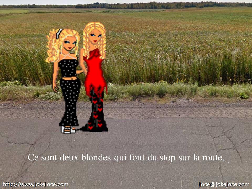Ce sont deux blondes qui font du stop sur la route,