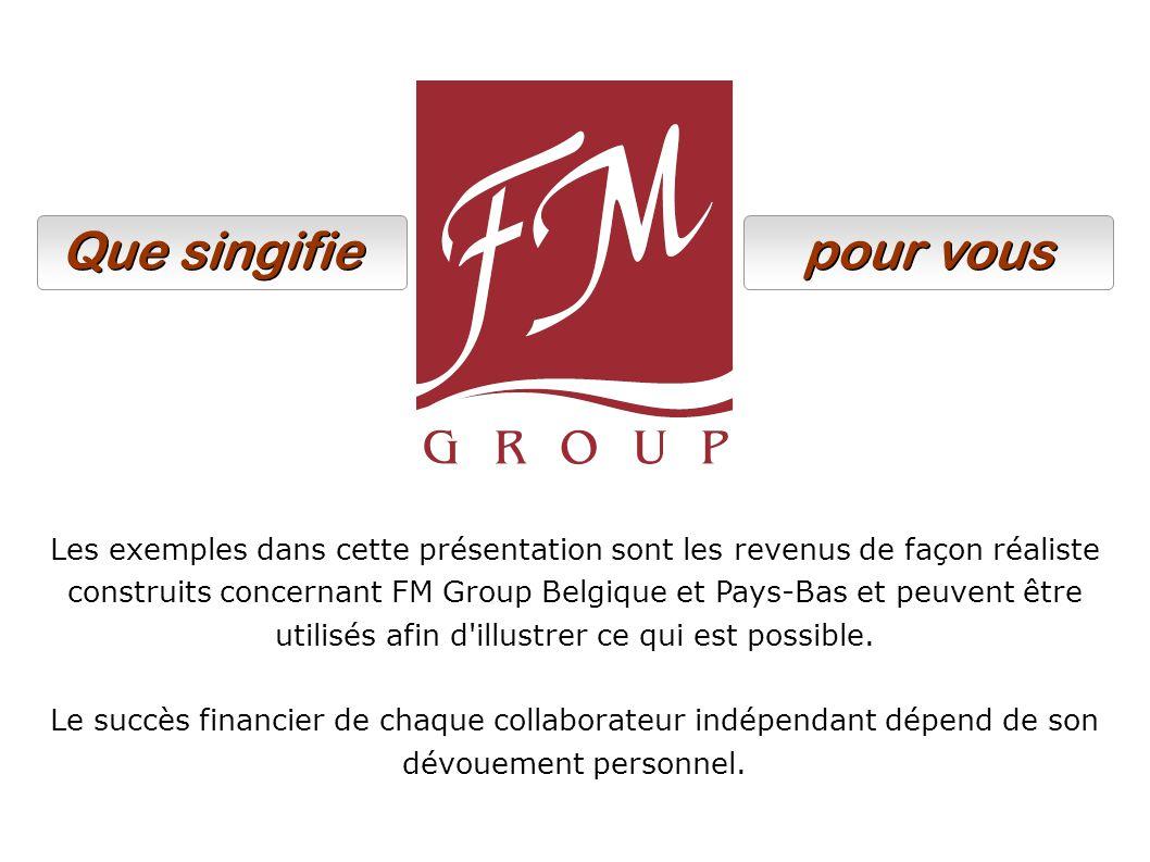 Les exemples dans cette présentation sont les revenus de façon réaliste construits concernant FM Group Belgique et Pays-Bas et peuvent être utilisés afin d illustrer ce qui est possible.