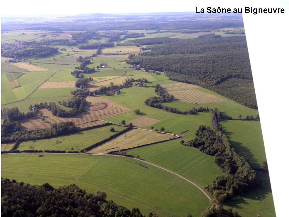 Vallée de la Saône près des Thons La Saône au Bigneuvre