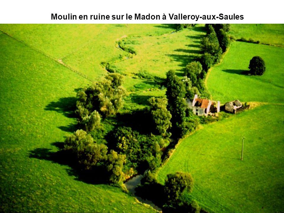 Le moulin Bouton sur le Vair à VouxeyMoulin en ruine sur le Madon à Valleroy-aux-Saules