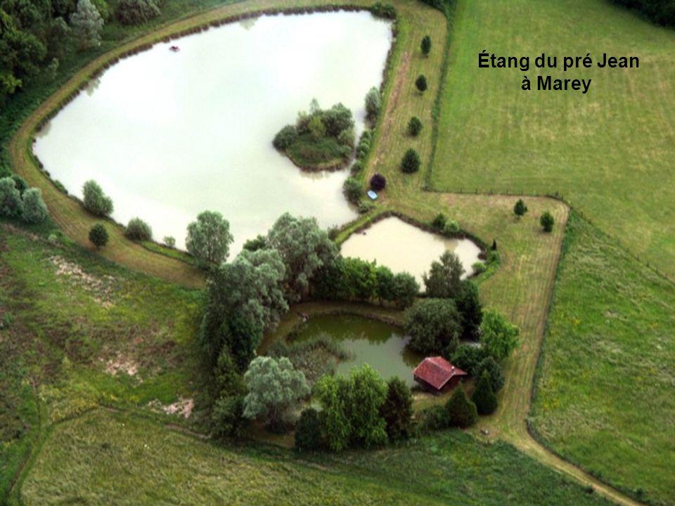 Étang de Jeanmol à Ville-sur-Illon Étang de la Mailly à Dombrot-sur-Vair Étang du pré Jean à Marey
