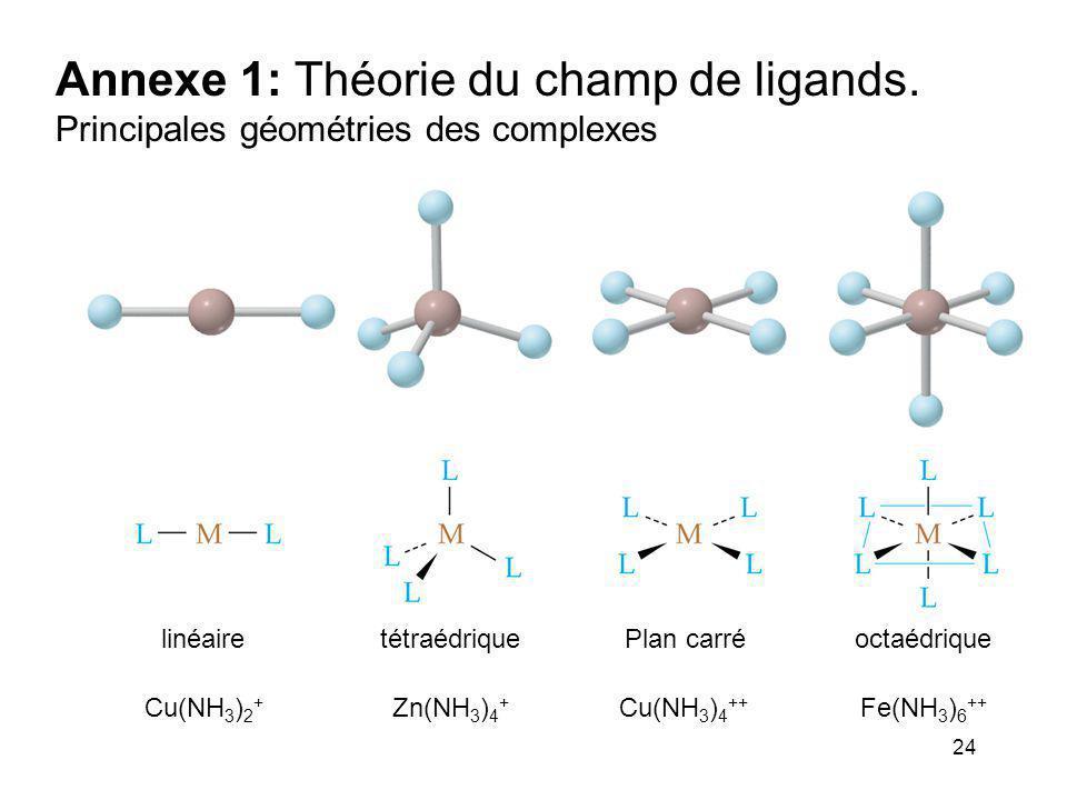 24 Annexe 1: Théorie du champ de ligands. Principales géométries des complexes Cu(NH 3 ) 2 + Zn(NH 3 ) 4 + Cu(NH 3 ) 4 ++ Fe(NH 3 ) 6 ++ linéairetétra