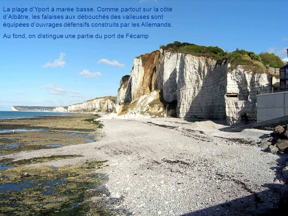 Un paysage typique de la Normandie et surtout du pays de Caux : le clos- masure.