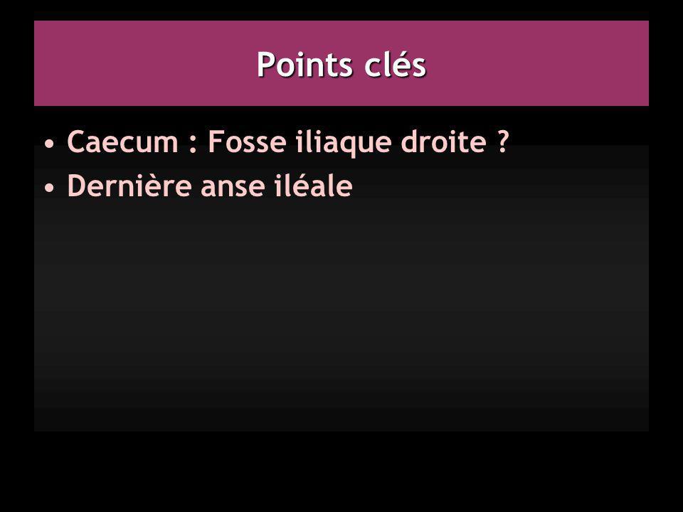 Points clés Caecum : Fosse iliaque droite ? Dernière anse iléale