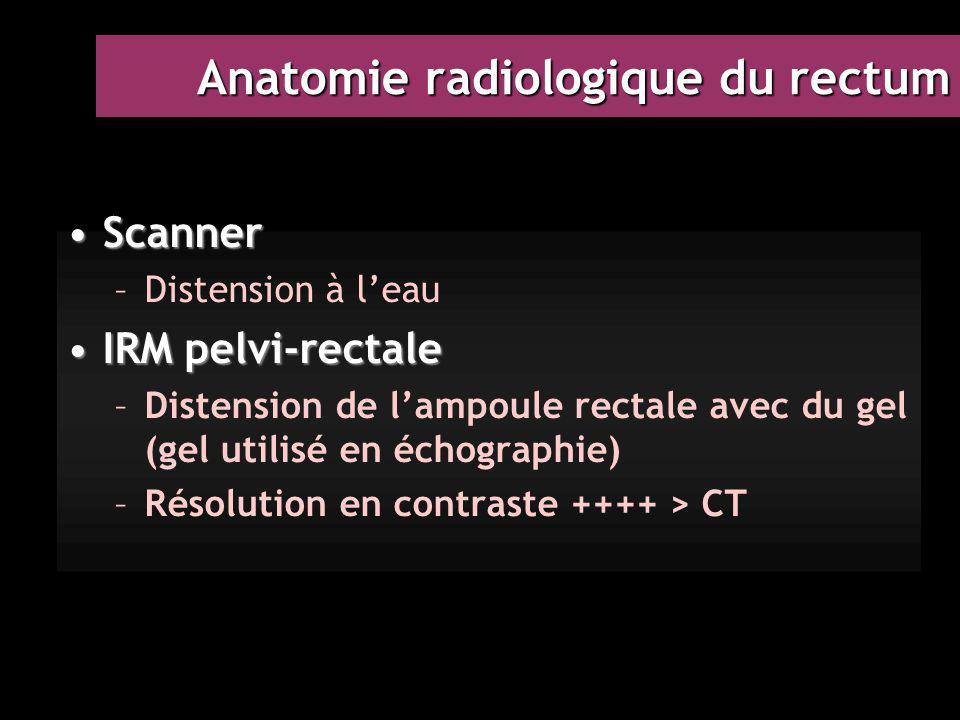Anatomie radiologique du rectum ScannerScanner –Distension à l'eau IRM pelvi-rectaleIRM pelvi-rectale –Distension de l'ampoule rectale avec du gel (ge