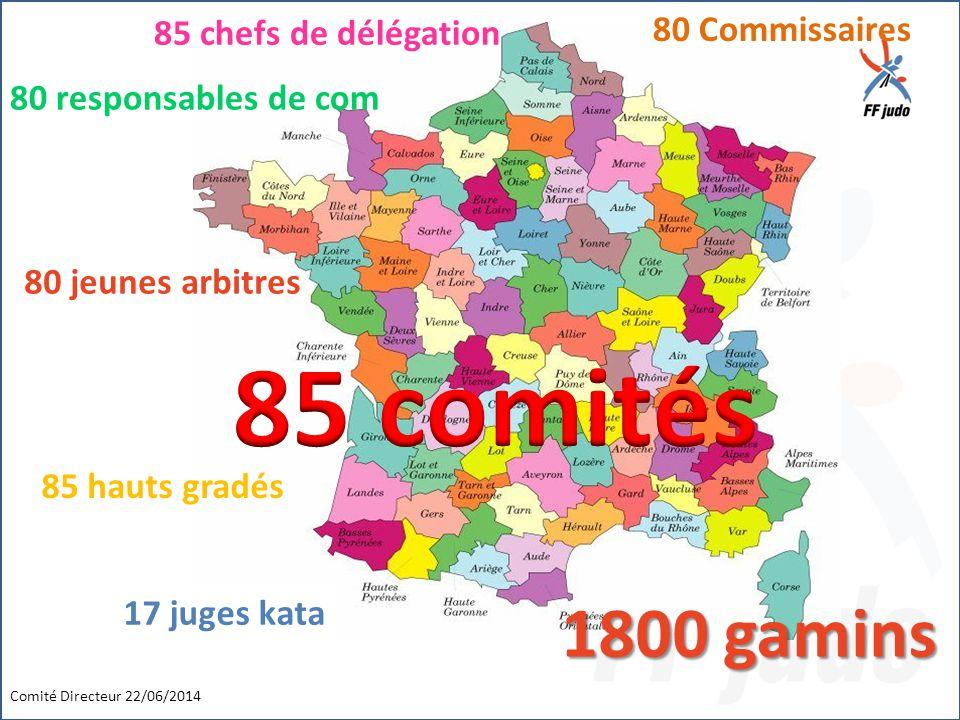 Comité Directeur 22/06/2014 17 juges kata 85 hauts gradés 80 jeunes arbitres 80 Commissaires 1800 gamins 85 chefs de délégation 80 responsables de com