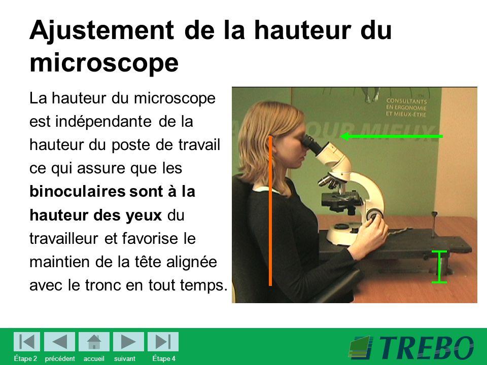 Ajustement de la hauteur du microscope La hauteur du microscope est indépendante de la hauteur du poste de travail ce qui assure que les binoculaires sont à la hauteur des yeux du travailleur et favorise le maintien de la tête alignée avec le tronc en tout temps.
