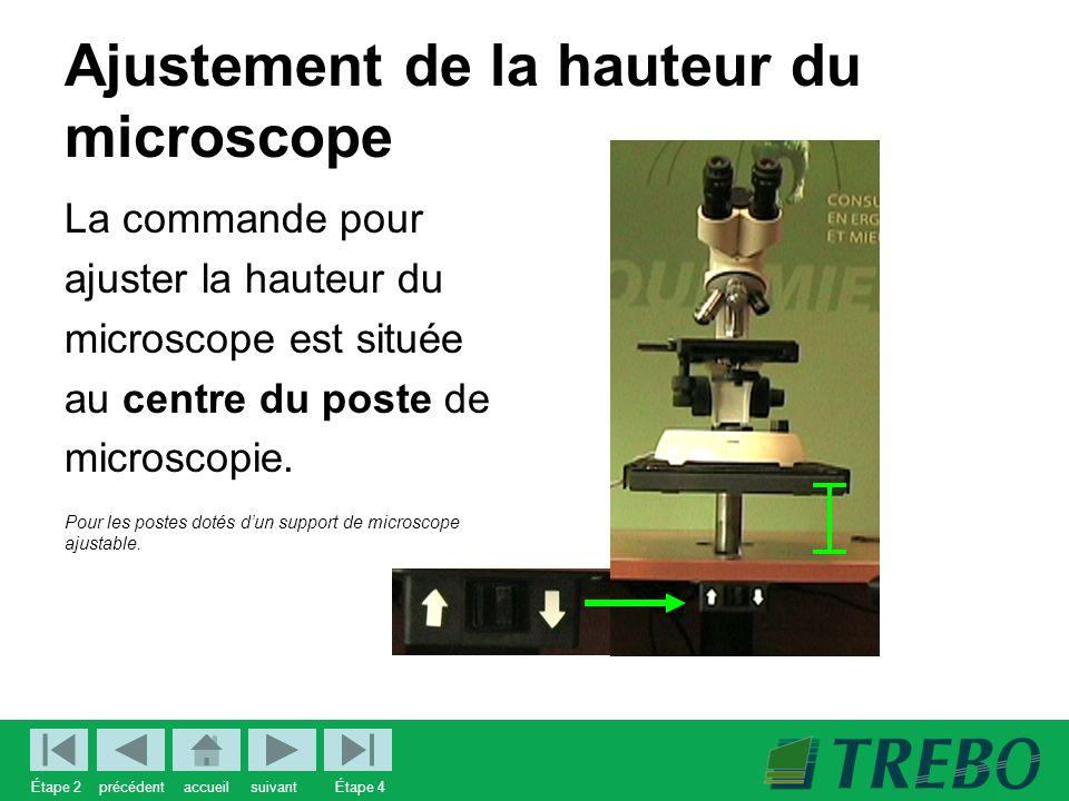 Ajustement de la hauteur du microscope La commande pour ajuster la hauteur du microscope est située au centre du poste de microscopie.