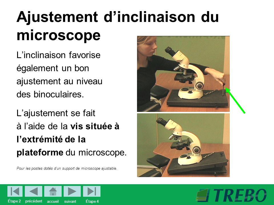 Ajustement d'inclinaison du microscope L'inclinaison favorise également un bon ajustement au niveau des binoculaires.