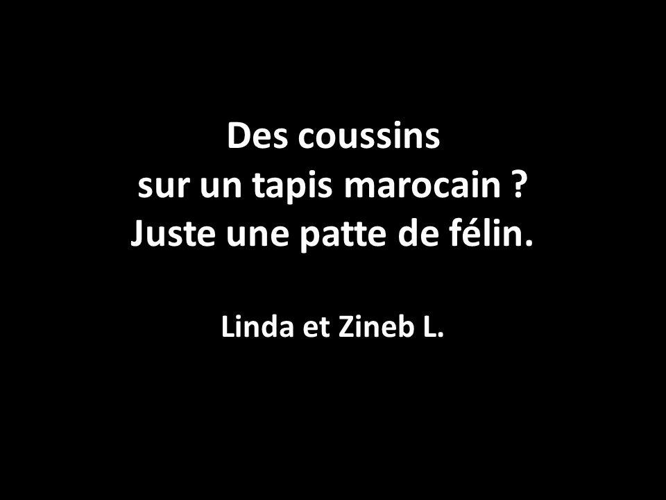 Des coussins sur un tapis marocain ? Juste une patte de félin. Linda et Zineb L.