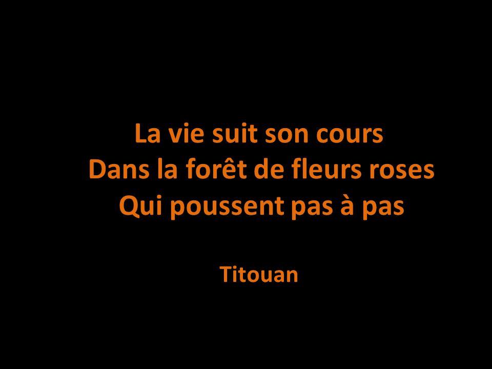 La vie suit son cours Dans la forêt de fleurs roses Qui poussent pas à pas Titouan