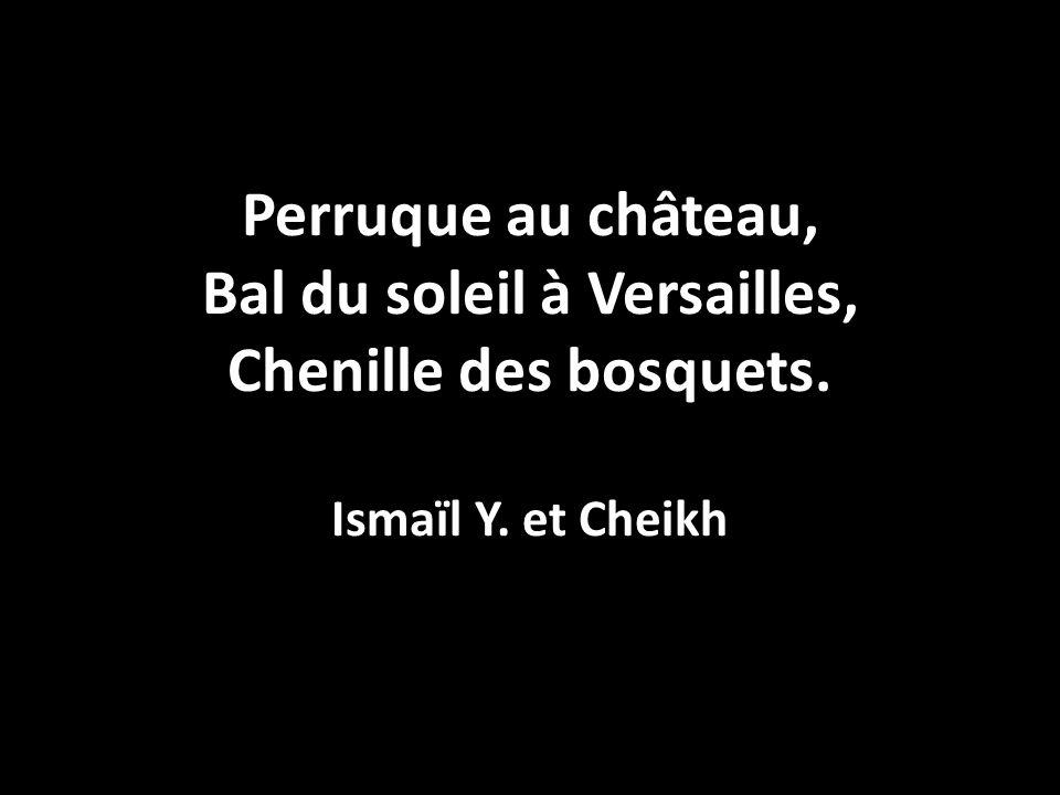 Perruque au château, Bal du soleil à Versailles, Chenille des bosquets. Ismaïl Y. et Cheikh