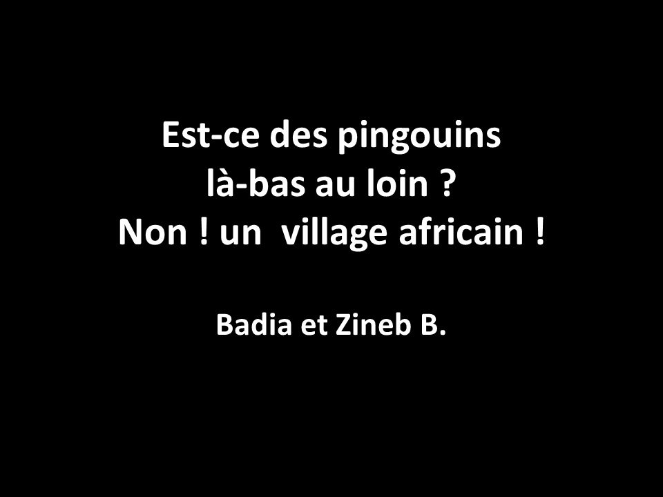 Est-ce des pingouins là-bas au loin ? Non ! un village africain ! Badia et Zineb B.