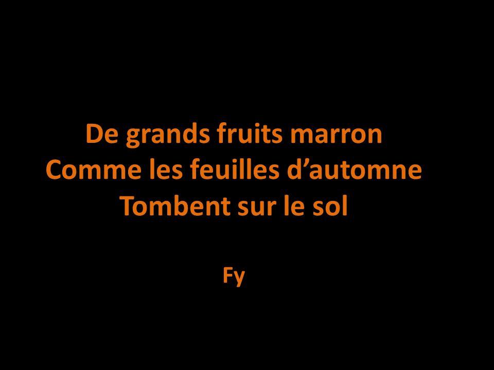 De grands fruits marron Comme les feuilles d'automne Tombent sur le sol Fy