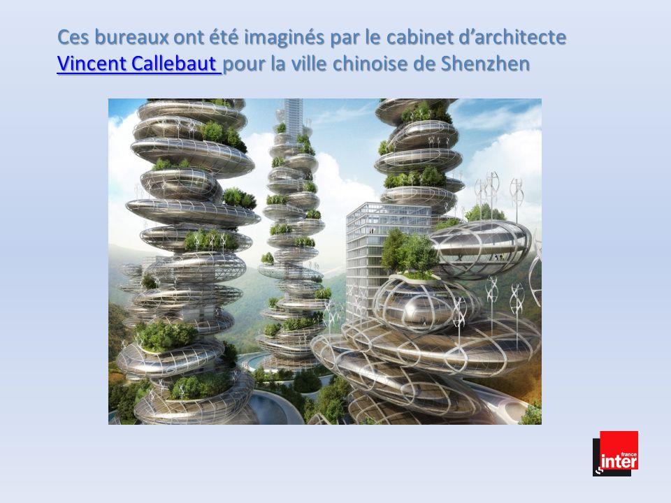 Ces bureaux ont été imaginés par le cabinet d'architecte Vincent Callebaut pour la ville chinoise de Shenzhen Vincent Callebaut Vincent Callebaut