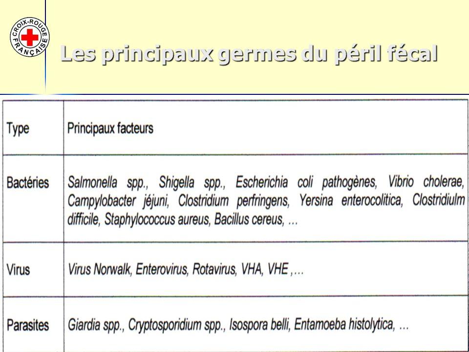 12/41 Les principaux germes du péril fécal