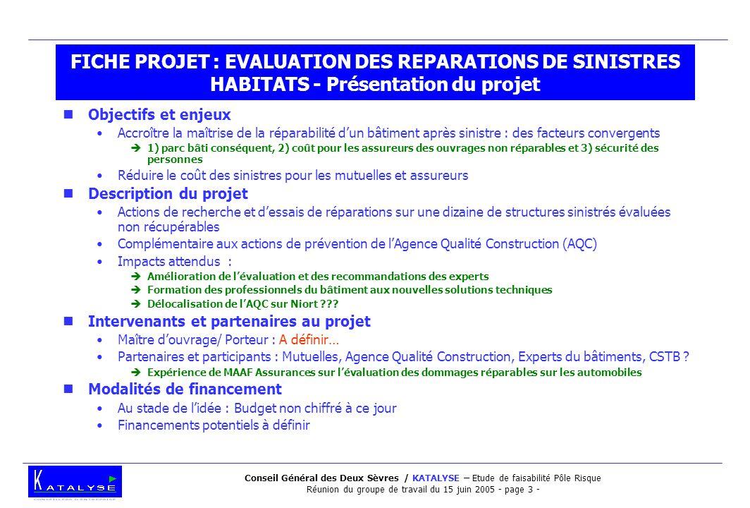Conseil Général des Deux Sèvres / KATALYSE – Etude de faisabilité Pôle Risque Réunion du groupe de travail du 15 juin 2005 - page 3 - FICHE PROJET : E