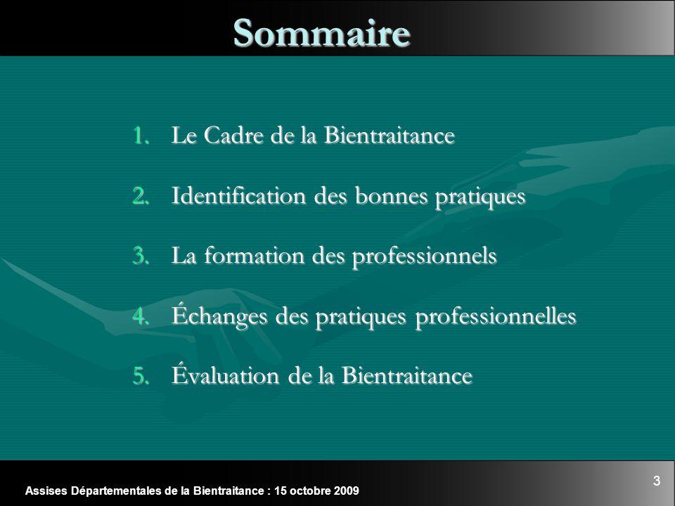 3 Sommaire 1.Le Cadre de la Bientraitance 2.Identification des bonnes pratiques 3.La formation des professionnels 4.Échanges des pratiques professionn