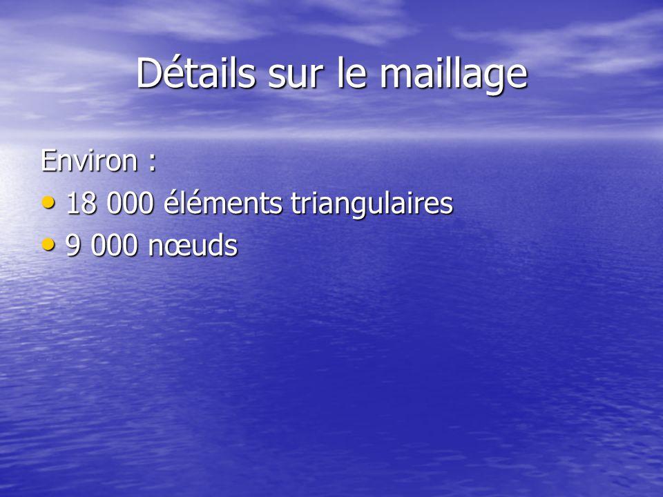 Détails sur le maillage Environ : 18 000 éléments triangulaires 18 000 éléments triangulaires 9 000 nœuds 9 000 nœuds