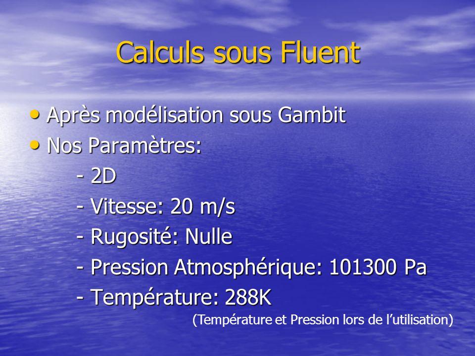 Calculs sous Fluent Après modélisation sous Gambit Après modélisation sous Gambit Nos Paramètres: Nos Paramètres: - 2D - Vitesse: 20 m/s - Rugosité: Nulle - Pression Atmosphérique: 101300 Pa - Température: 288K (Température et Pression lors de l'utilisation)