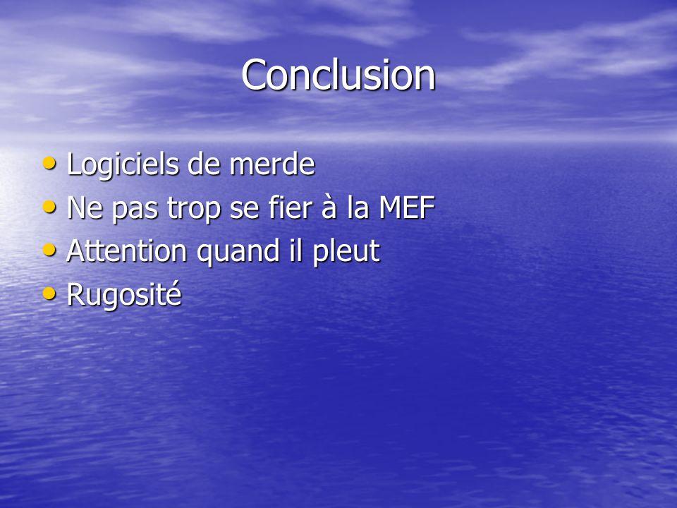Conclusion Logiciels de merde Logiciels de merde Ne pas trop se fier à la MEF Ne pas trop se fier à la MEF Attention quand il pleut Attention quand il pleut Rugosité Rugosité