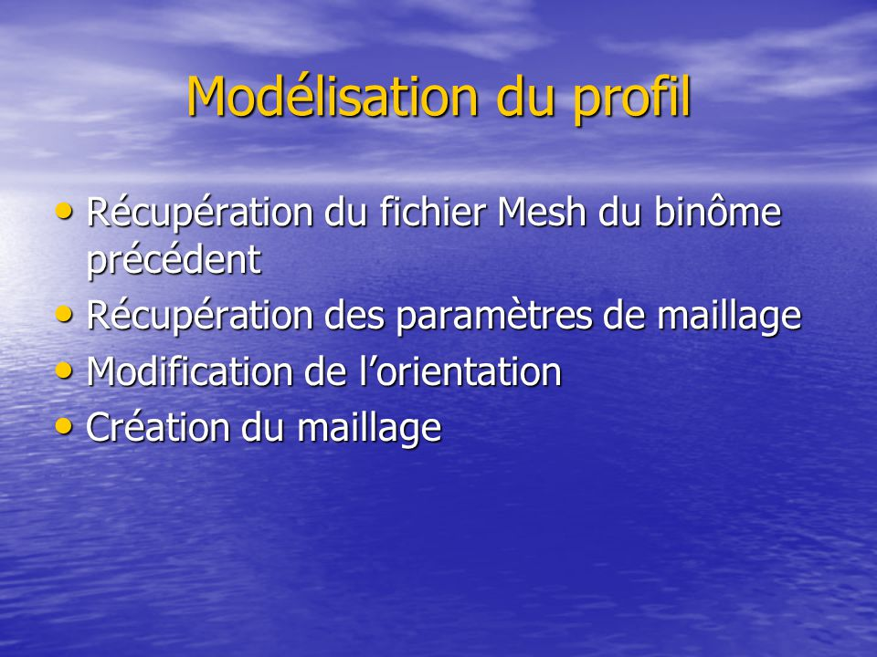 Modélisation du profil Récupération du fichier Mesh du binôme précédent Récupération du fichier Mesh du binôme précédent Récupération des paramètres de maillage Récupération des paramètres de maillage Modification de l'orientation Modification de l'orientation Création du maillage Création du maillage