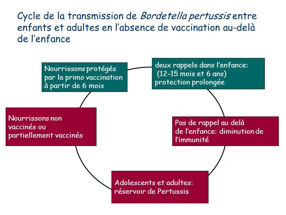 Cycle de la transmission de Bordetella pertussis entre enfants et adultes en l'absence de vaccination au-delà de l'enfance Nourrissons non vaccinés ou partiellement vaccinés Nourrissons protégés par la primo vaccination à partir de 6 mois deux rappels dans l'enfance: (12-15 mois et 6 ans) protection prolongée Pas de rappel au delà de l'enfance: diminution de l'immunité Adolescents et adultes: réservoir de Pertussis
