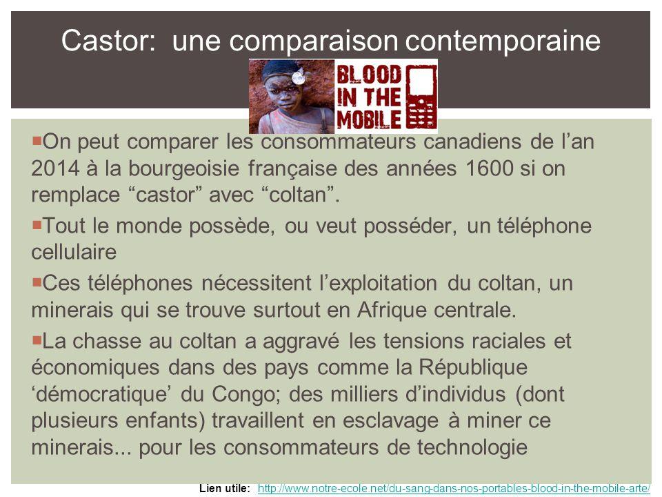  On peut comparer les consommateurs canadiens de l'an 2014 à la bourgeoisie française des années 1600 si on remplace castor avec coltan .