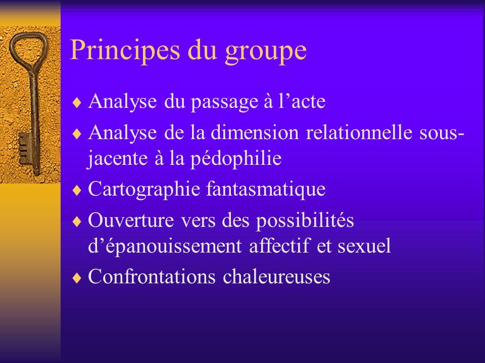 Principes du groupe  Analyse du passage à l'acte  Analyse de la dimension relationnelle sous- jacente à la pédophilie  Cartographie fantasmatique  Ouverture vers des possibilités d'épanouissement affectif et sexuel  Confrontations chaleureuses