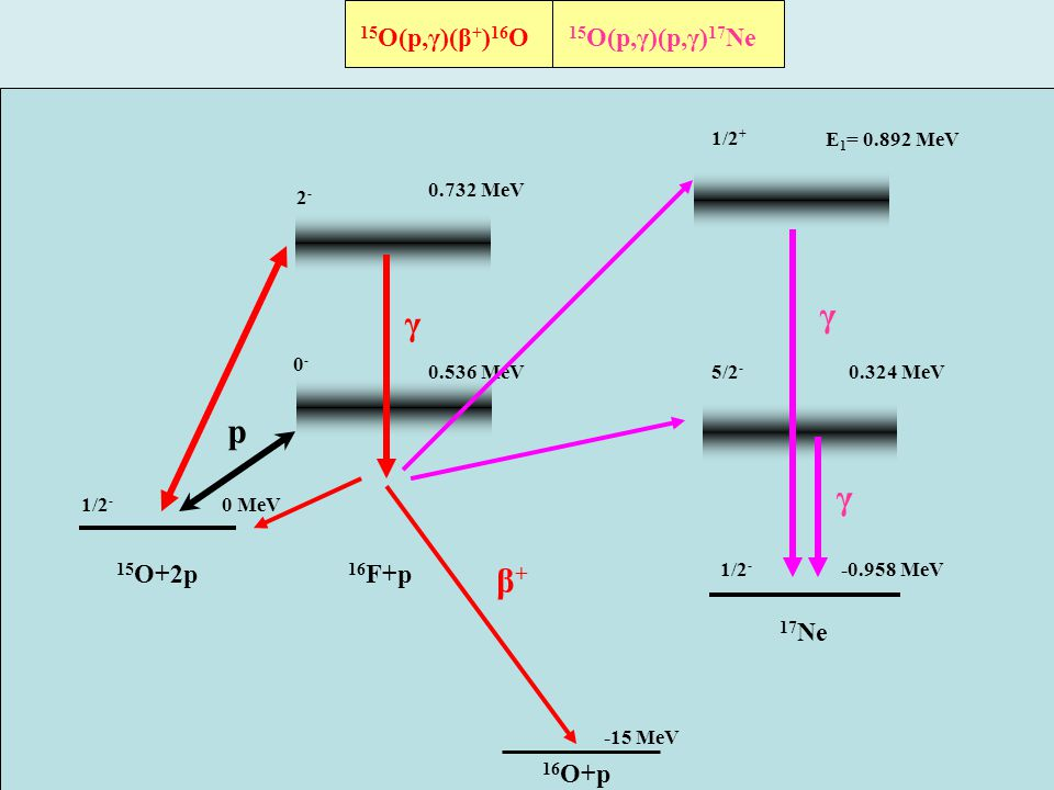 β + (Q β =15 MeV) 15 O+2p 16 F+p 0.536 MeV p 1/2 - 0-0- 0.732 MeV 16 O+p 17 Ne 2-2- 5/2 - 1/2 + E 1 = 0.892 MeV 0.324 MeV 0 MeV -0.958 MeV -15 MeV γ γ