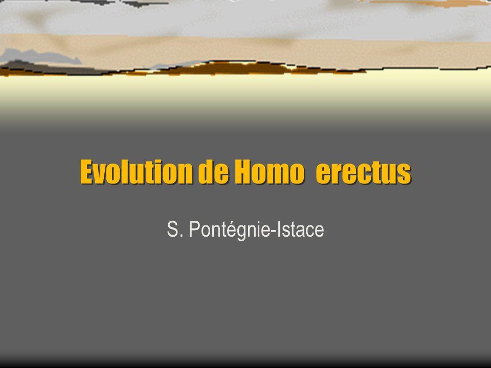 Homo erectus  A colonisé tout l'ancien monde  Appellation diverses et discutées erectus réservée aux fossiles asiatiques ergaster pour erectus africain primitif antecessor pour erectus européen