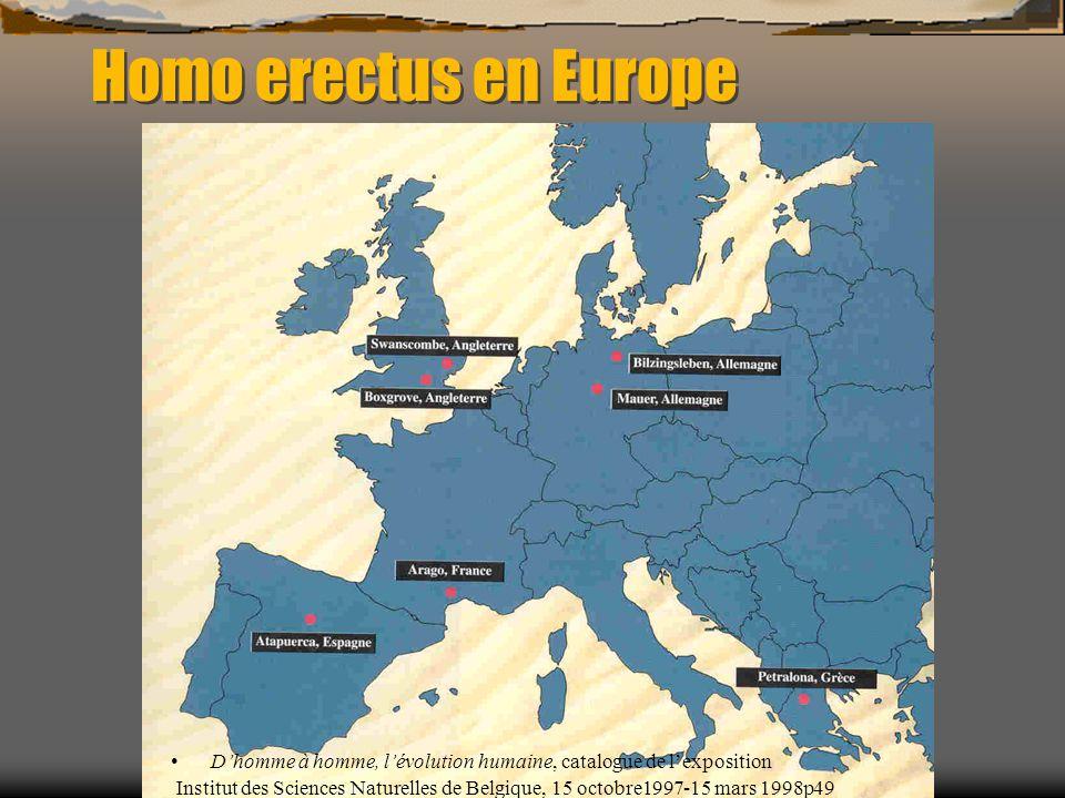 Homo erectus en Europe D'homme à homme, l'évolution humaine, catalogue de l'exposition Institut des Sciences Naturelles de Belgique, 15 octobre1997-15