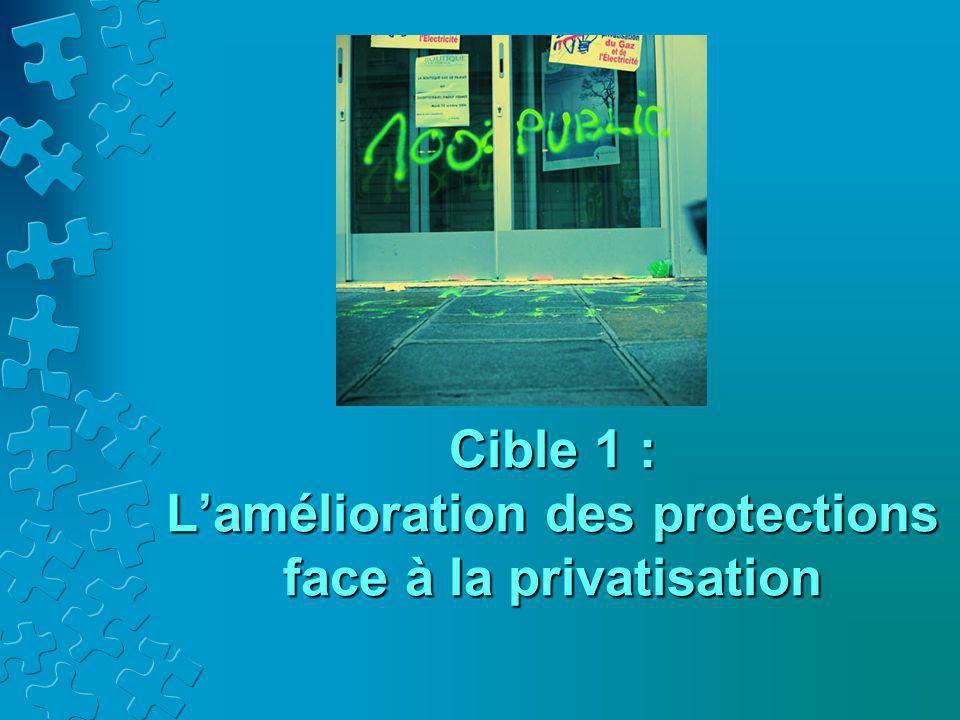 Cible 1 : L'amélioration des protections face à la privatisation